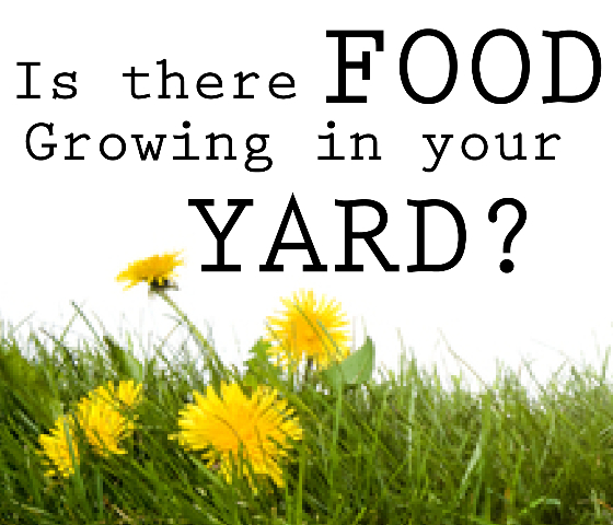 food-in-your-yard-01 C2
